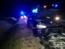 Zderzenie samochodu osobowego z dzikiem